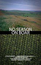 No Season on Boar
