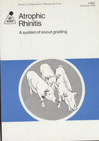 Atrophic Rhinitis: A System of Snout Grading