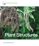 Essential Science Series, Plant Structures