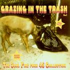 Truth & Soul presents Grazing In The Trash Vol 1 : The Soul Fire Funk 45 Collection