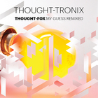 Thought-Tronix: My Guess Remixed