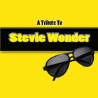 Hits Of Stevie Wonder - (A Tribute)