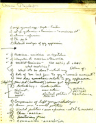 Collection of Notes re: political theory, feminism, gay liberation movement