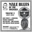 Male Blues Of The Twenties Vo. 2 (1923-1928)