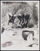 3 males slitting throat of a sheep with pot for blood collecting