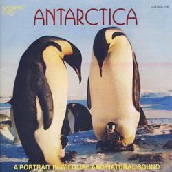 Antarctica: A Portrait In Wildlife & Natural Sound Album Art
