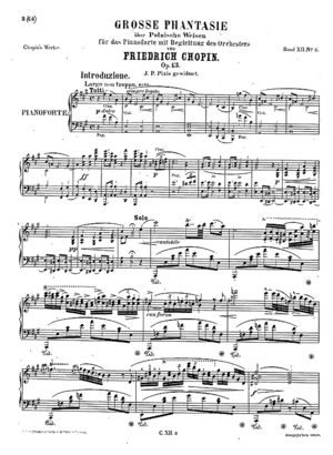 Fantasia op.13