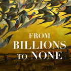 From Billions to None: The Passenger Pigeon's Flight to Extinction