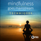 Mindfulness Goes Mainstream - Techniques, Silent Meditation at UMass Center for Mindfulness