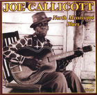 Joe Callicott: North Mississippi Blues