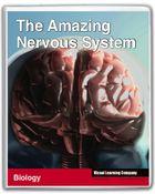 Amazing Human Body, The Amazing Nervous System