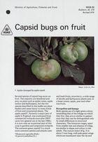 Capsid Bugs on Fruit
