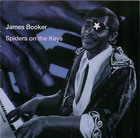 James Booker: Spiders on the Keys