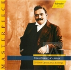 Viva Enrico Caruso: 25 Great Opera Arias & Songs