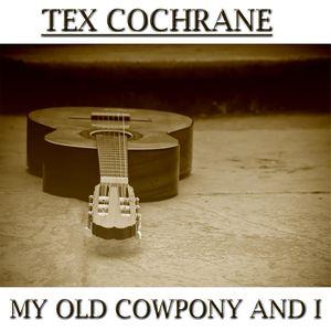 My Cowpony And I