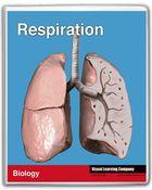 Amazing Human Body, Respiration
