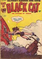 Black Cat Comics, Vol. 1 no. 13