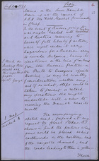 Memo on the Lower Danube Drawn Up at the Request of H.R.H. the Field Marshal Commanding in Chief