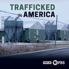 Frontline, Season 36, Episode 9, Trafficked in America