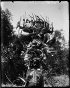 Delena (?) woman wearing an elaborate feather headdress, and tooth jewellery (see also RAI No. 34326, 34327, 34329)