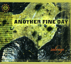 Another Fine Day: Salvage