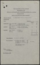 Copy of Report of Chief Public Health Inspector re: Overcrowding at 37 Castle Street, Wellingborough, February 16, 1959