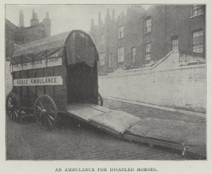 An Ambulance for Disabled Horses (b/w photo)