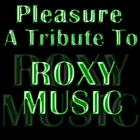 A Tribute To Roxy Music