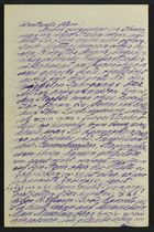 Letter from David Kaufmann to Unnamed Recipient, November 9, 1897