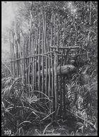 wooden framework, deadfall trap ?