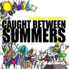 Caught Between Summers