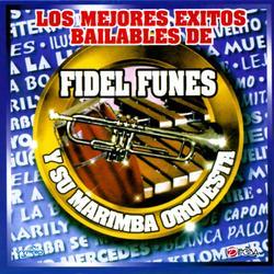 Los Mejores Exitos Bailables, Guatemala Album Art