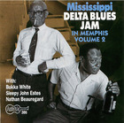 Mississippi Delta Blues Jam In Memphis, Vol.2