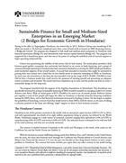 Sustainable Finance for Small and Medium-Sized Enterprises in an Emerging Market (2 Bridges for Economic Growth in Honduras)