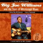 Big Joe Williams and the Stars of Mississippi Blues (B)
