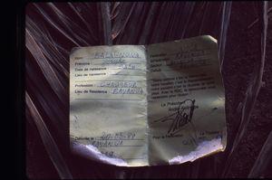 Close up of the identification card of Josephe Balagnona of Bayanga.