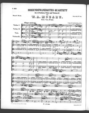 Dreiundzwanzigstes Quartett