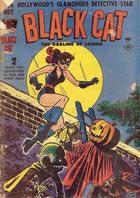 Black Cat Comics, Vol. 1 no. 14