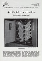 Artificial Incubation in Small Incubators