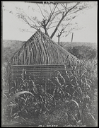 frame of building without thatch