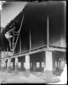 Boy climbing pole up to roof of European style building (not church or Mission House) (see also RAI No. 33281)