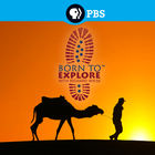 Born to Explore with Richard Wiese, Episode 116, South Africa: Amazing Encounters