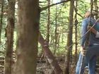 Mr. Coperthwaite: A Life in the Maine Woods, Episode 2, A Summer Task