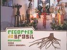Recortes do Brasil, Maranhão: Casa Fanti-Ashanti