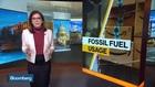 Bezos Commits $10 Billion to Fight Climate Change