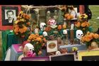 In the Americas with David Yetman, Season 1, Episode 1, Day of the Dead: A Mexican Celebration