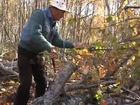 Mr. Coperthwaite: A Life in the Maine Woods, Episode 3, Autumn's Work