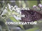 A Model for Conservation