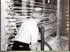 Ford Educational Library, Close-up Footage of Men and Women Working in Unidentified Textile Facility, Black and White Kittens in a Bundle of Rope.