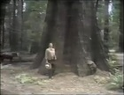 Great Western Savings Commercial: Redwoods